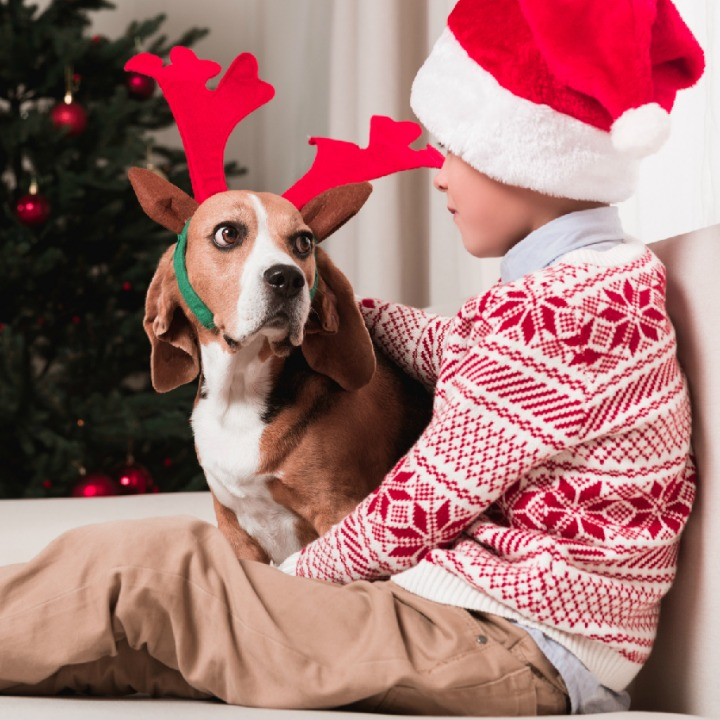 boy keeping dog safe at Christmas