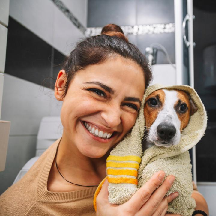 qc pet studies dog grooming in bath
