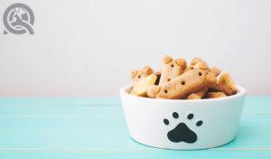 ingredients in dog treats