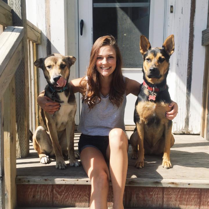 Casey Bechard - Dog Grooming Career
