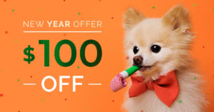 qc pet studies new year offer