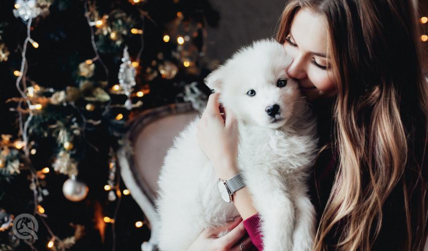 woman cuddling puppy
