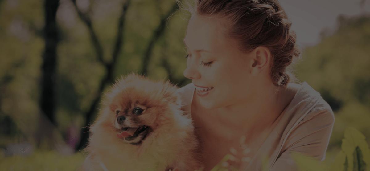 QC Pet Studies' Top 10 Dog Grooming Articles of the Last Decade