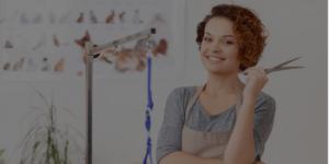 dog groomer working in salon and increasing dog groomer salary