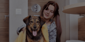 dog groomer salary header image