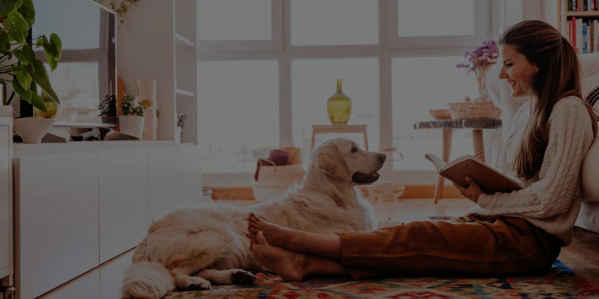 My Honest Review of QC Pet Studies