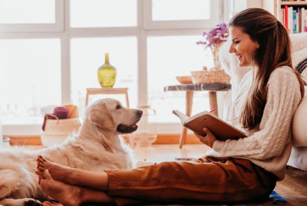 QC Pet Studies april article feature image
