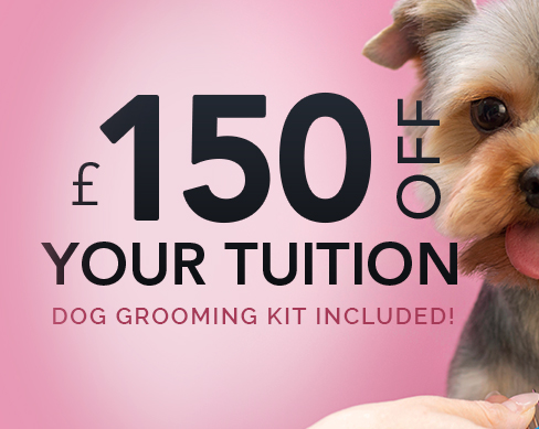 March Offer UK