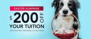 Easter Promotion $200 Off!