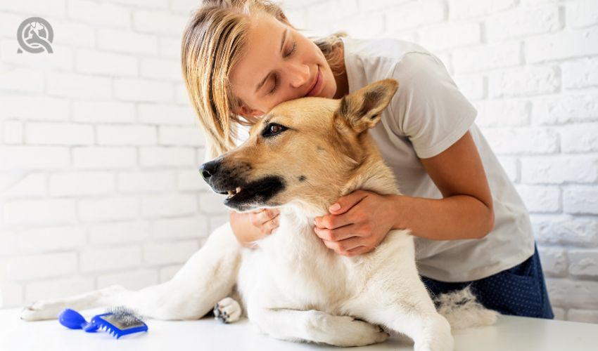 Groomer hugging dog