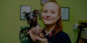 Dog groomer salary article, July 2 2021, Header Image
