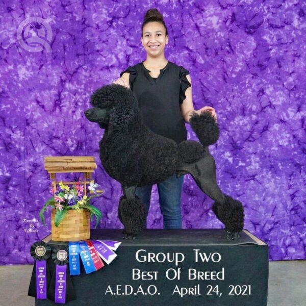 Becoming a dog groomer article, June 18 2021, Camille Torkornoo headshot