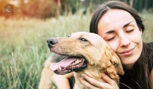 Dog training quiz, July 30 2021, in-post image, happy adult women cuddling dog in a field