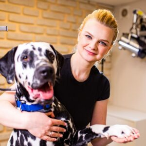 How to become a dog groomer article Feature Image