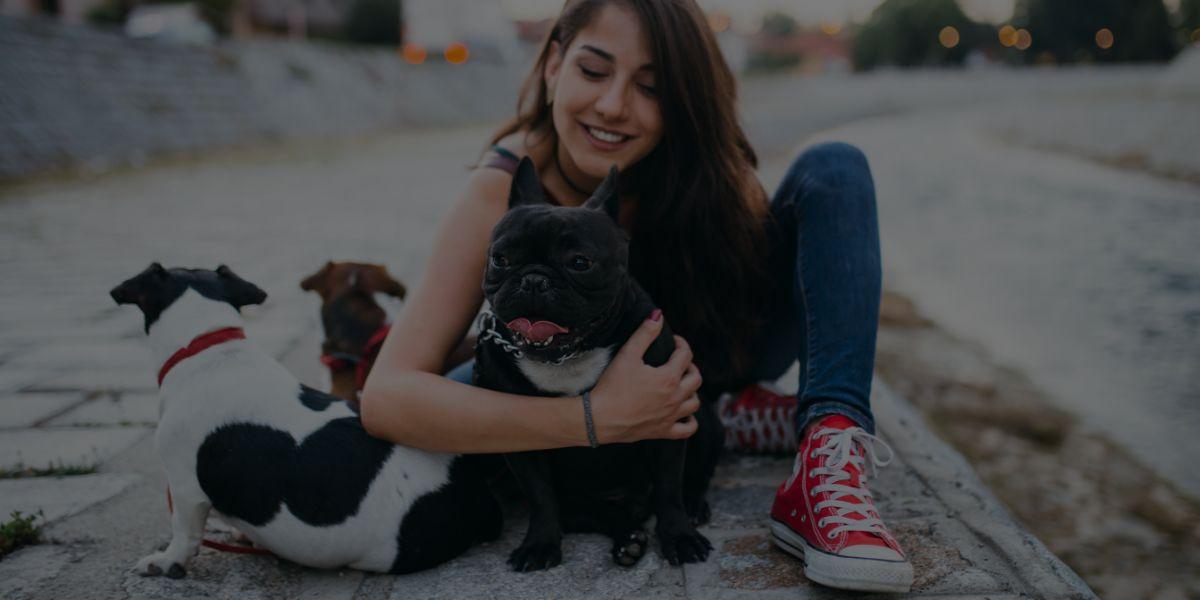 22 Lucrative Pet Business Ideas Anyone Can Start