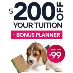 QC Pet Studies Sept promo article Feature Image