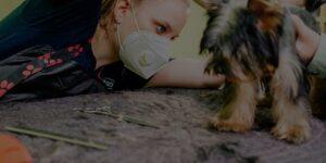 QC Pet Studies Sept promo article Header Image